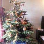 récidive du Père Noël chez Nathan et apportée par sa maman20.12.2012