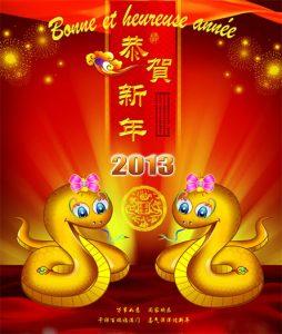 année du serpent d'eau