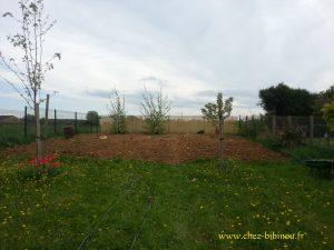 aménagement d'arbres au fond du verger-potager