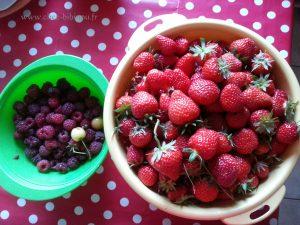 3ème cueillette de fraises (2.5 kg) et presque 1kg de framboises (confiture, congélateur et à manger) ;-)
