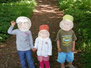 Suivons les enfants dans les bois...