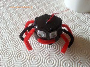 Une araignée aux couleurs latex et rouge, aux yeux brillants la nuit :-)