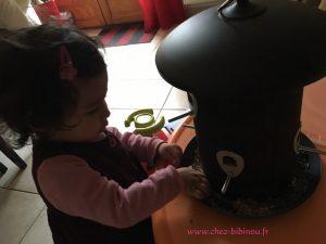 Elisa qui s'obstine à remettre les graines dans les trous de la mangeoire