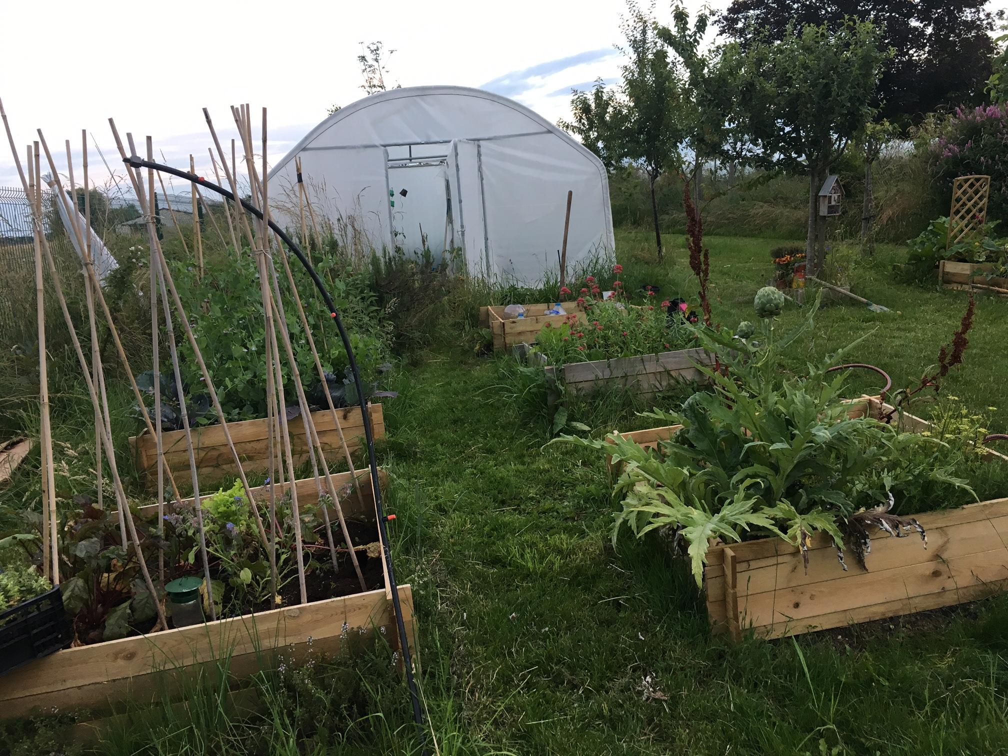 Le jardin en juin